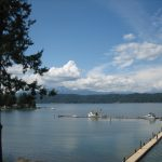alderbrook-from-room