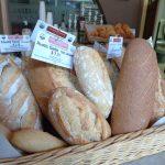 Delicious breads...