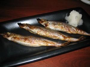 kaname_shishamo_500