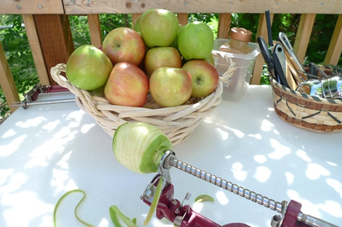 apple_peeler_500