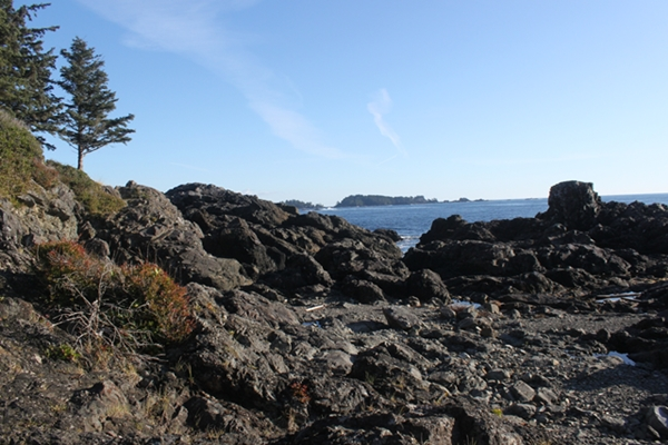 ucluelet_walk_600_1648