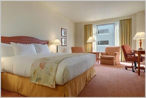hilton guestroom_600