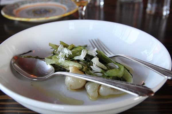 gastropod-onions-600-5339