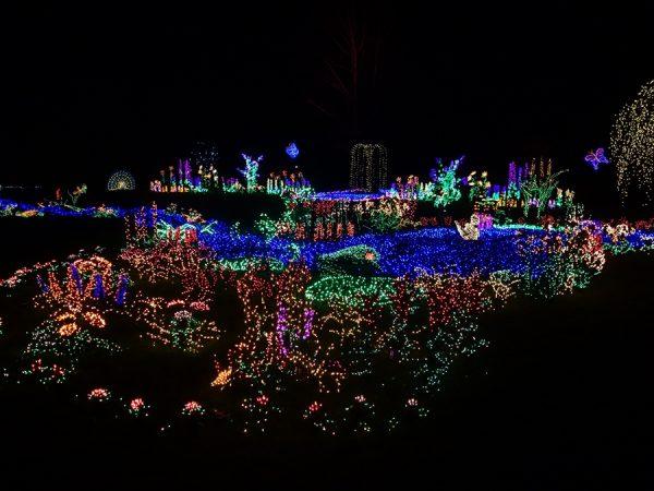 Bellevue Garden dLights 8032