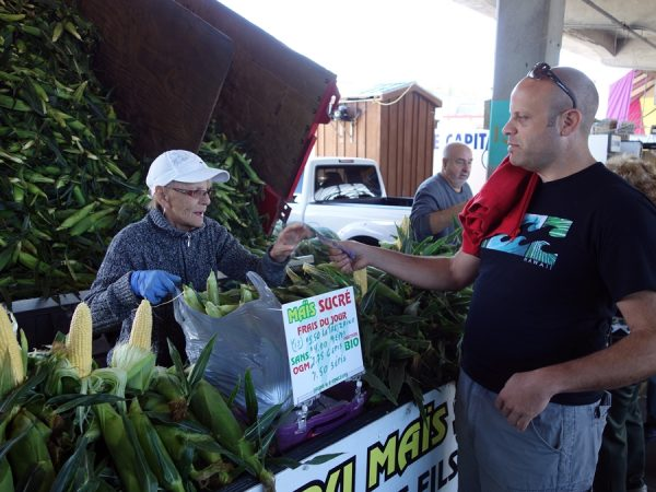 Jean-Talon corn sale