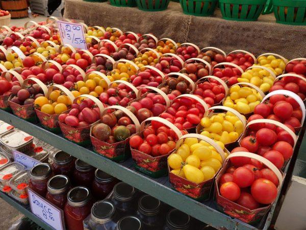 Jean-Talon tomatoes
