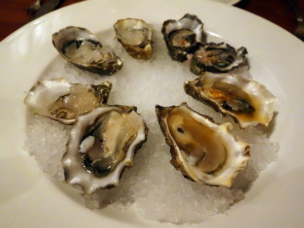Hitchcock oysters