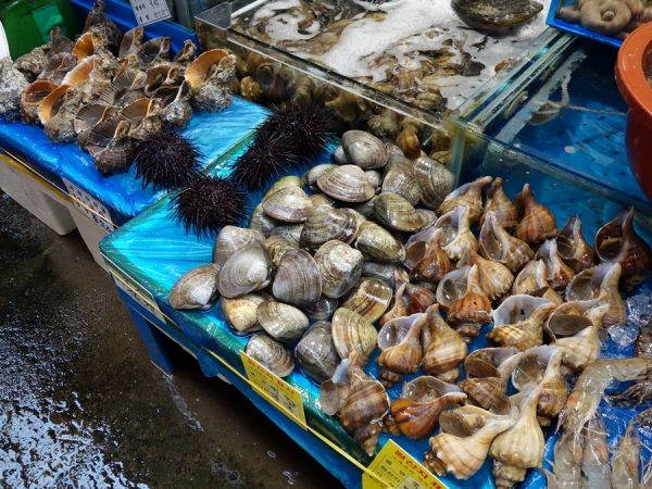 Noryangjin fish market shells