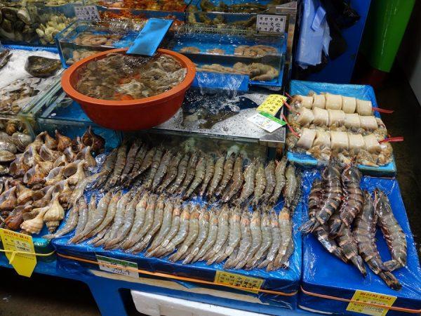 Noryangjin fish market shrimp