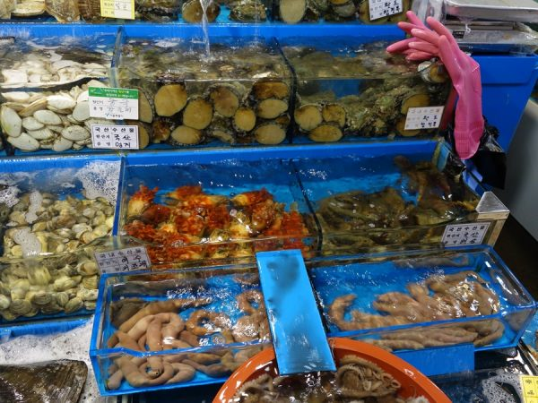 Noryangjin fish market squirts and such
