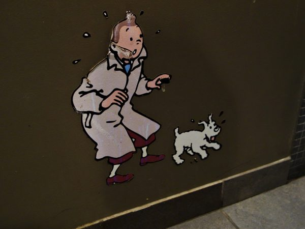 Tintin, spotted in the Chambar bathroom