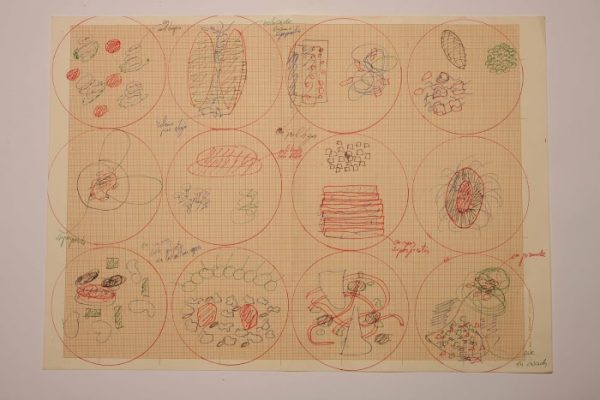 Ferran Adrià, plating diagram, ca. 2003-2004, colored pen on graph paper (courtesy of elBulli Foundation)