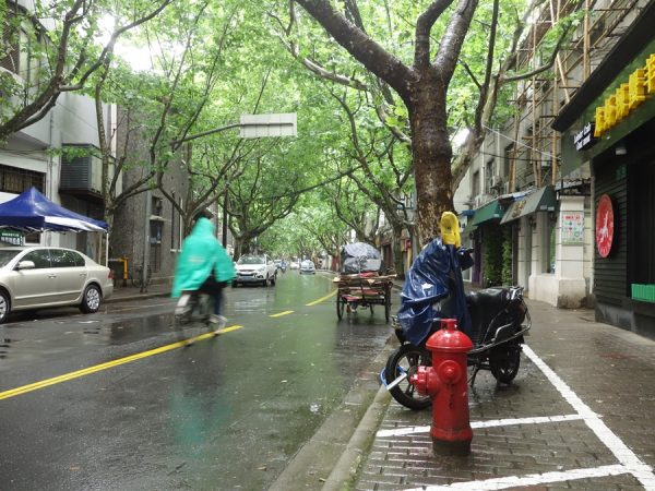 That morning noodle run meant a nice stroll through the French Concession. Rainy but beautiful.