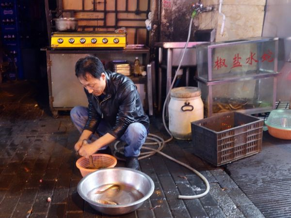 Thanks to UnTour Shanghai for inviting me to their fun Night Market Tour, where I watched my water snake get killed, skinned and fried.
