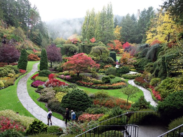 Beauty at The Butchart Gardens
